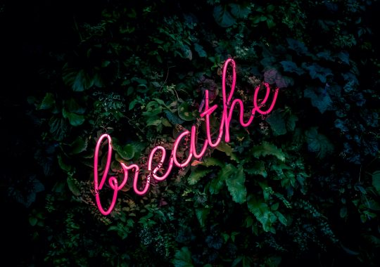 Neon word 'breathe', to introduce the best mindfulness podcast of 2020, against green foliage
